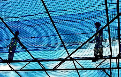 Mancatch Netting
